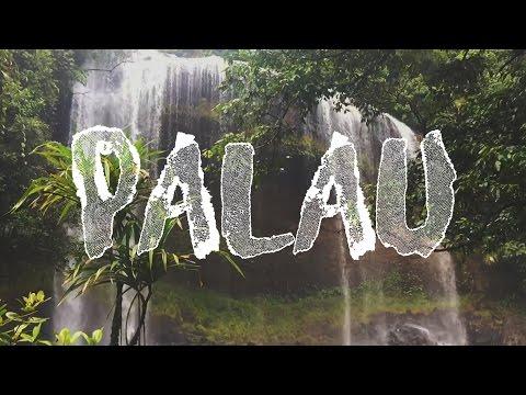 A trip to PALAU
