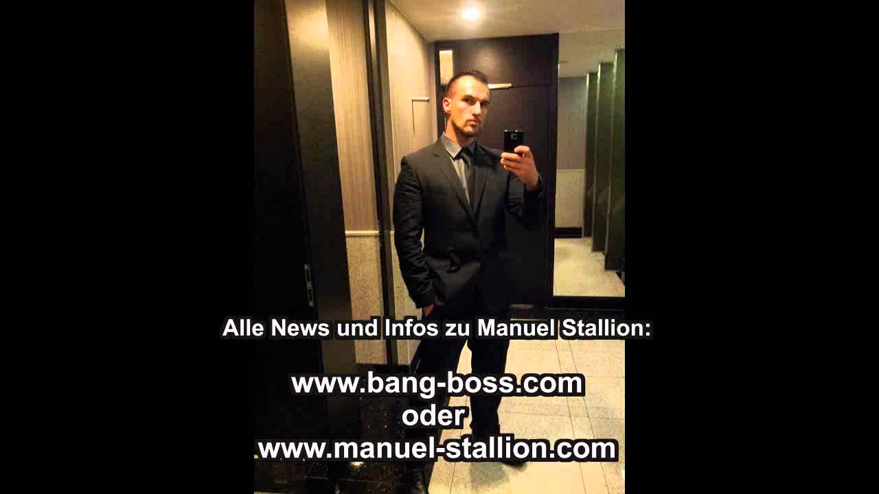 Manuel stallion