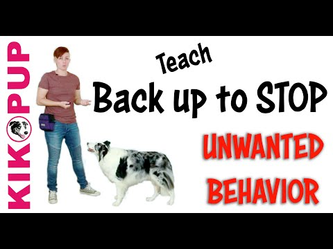 STOP UNWANTED behaviors with BACK UP!