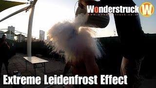 Liquid Nitrogen Ice Bucket Challenge - Extreme Leidenfrost Effect
