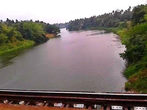 Chalakudy river: The soul of Athirapally falls