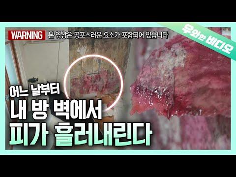 *심약자 주의* 내 방 벽에서 흐르기 시작한 빨간 핏자국의 정체   Red Blood Stain Leaking on the Wall in My Room
