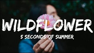 Download Mp3 5 Seconds Of Summer - Wildflower  Lyrics