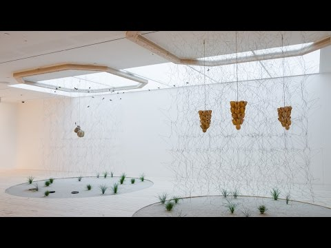 Contemporary Art: France / Experience Céleste Boursier-Mougenot's musical installation