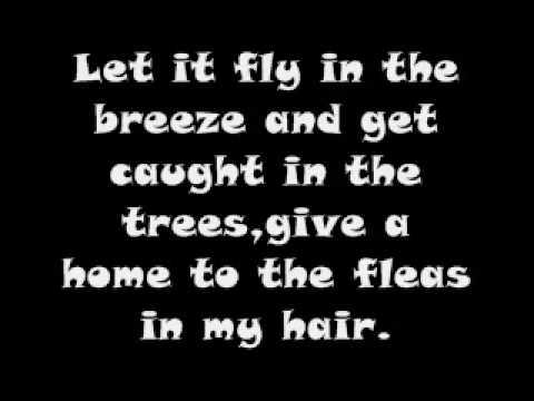 Hair Song Hair Lyrics