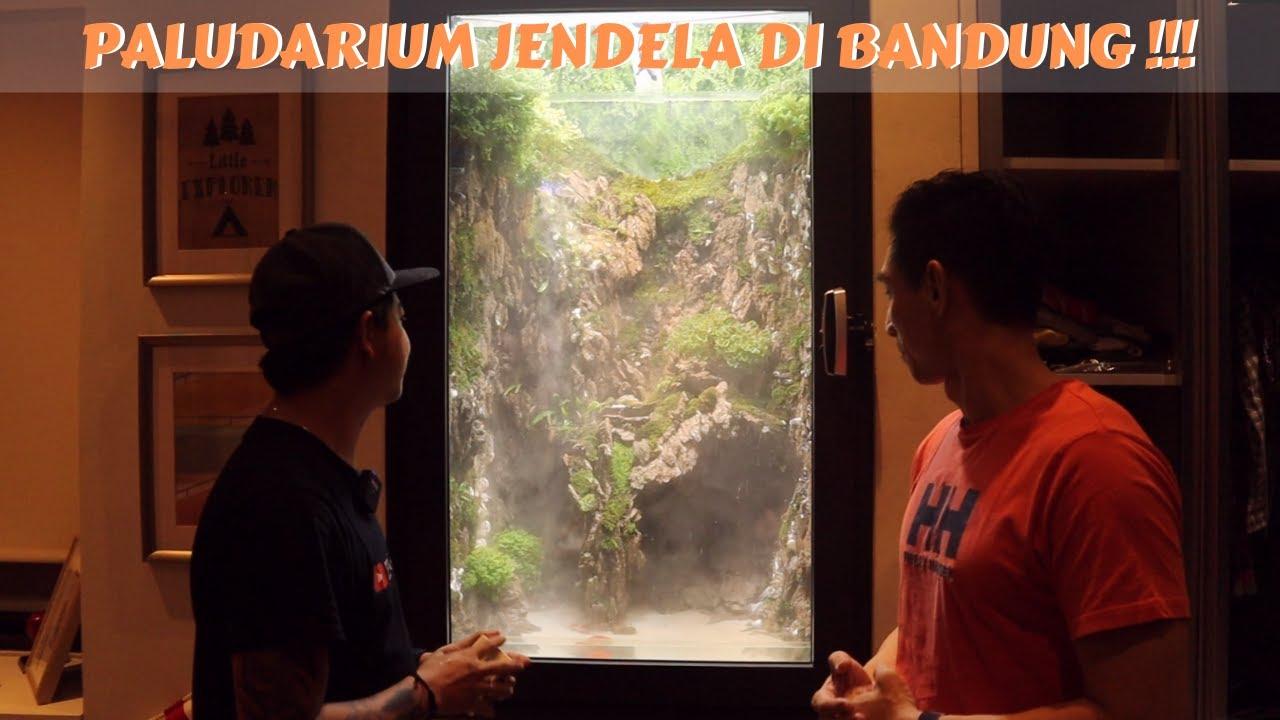 PALUDARIUM JENDELA DI BANDUNG BRO !!! NYALAIN SPRAYERNYA ...