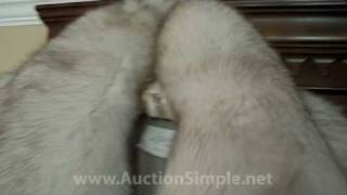 eBay Gorgeous Blue Fox Fur Coat From Custom Furrier Compared To Macy's Brand