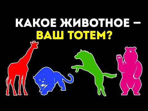 Тест: Какое Животное — Ваш Тотем?