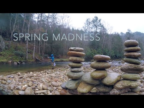 SPRING MADNESS - Fly Fishing North Carolina
