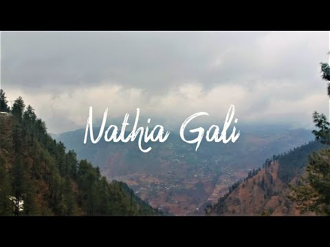 THE TRAVEL GUIDE TO NATHIA GALI | TRAVEL VLOG |