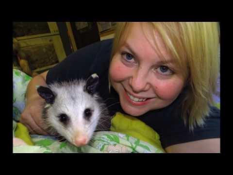 Pooka Possums Memorial