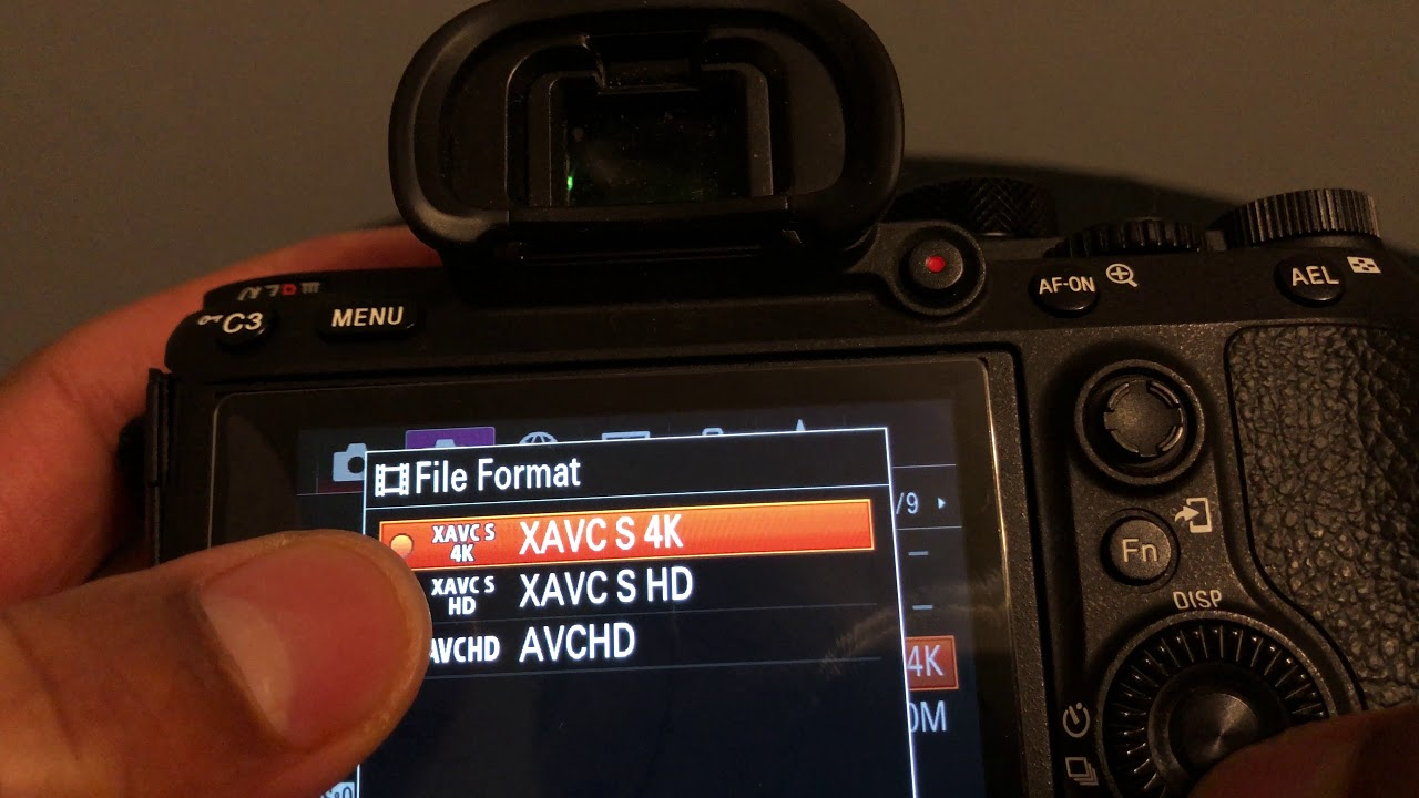 Sony A7riii and A7iii - FILE FORMATS OPTIONS