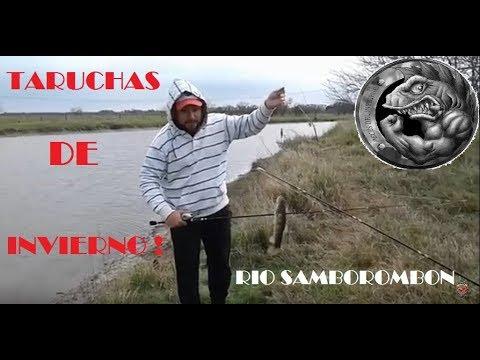 TARUCHAS | RECORRIENDO EL SAMBOROMBON # 2 | BRANDSEN.