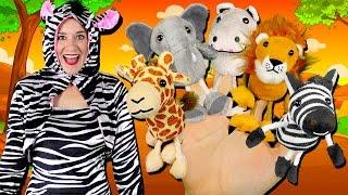 Safari Animals Finger Family Song | Elephant, Lion, Giraffe, Zebra & Hippo! Wild Animals for kids