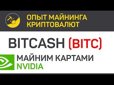 BitCash (BITC) майним картами Nvidia (algo X16R) | Выпуск 178 | Опыт майнинга криптовалют