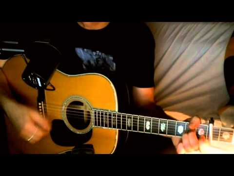 Eleanor Rigby ~ The Beatles - Macca ~ Acoustic Cover w/ Martin D-45 (Additional Verse)