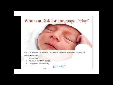 IS IT A LANGUAGE DELAY LANGUAGE DISORDER LANGUAGE DIFFERENCE