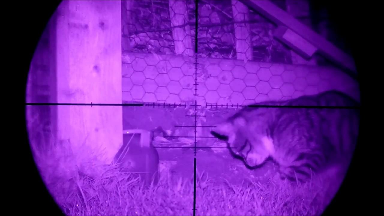 Runcam 2 HD night vision rat shoot - YouTube