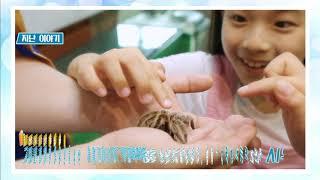 EBS 초등 1학년 여름방학생활 6강- 우정과 재미와 …