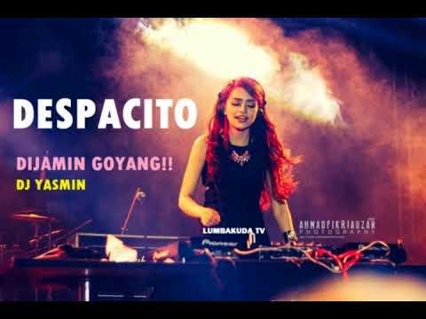 dj yasmin - despacito