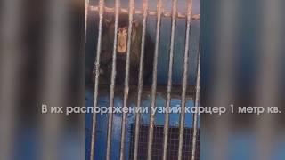 """Ужасы передвижного зоопарка """"Зоомир"""""""