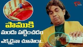 పాముకి మందు పట్టించడం ఎక్కడైనా చూసారా..? | Telugu Movie Comedy Scenes | TeluguOne