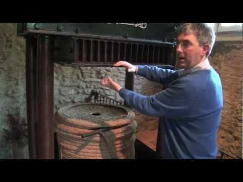 Cold pressing olive oil