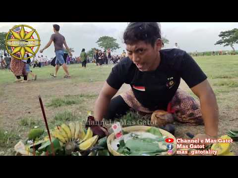 ||Seni Silat Dan Bantengan Episode #8||Putro Tunggul Manik Live @Sumobito - DSN.Kedungsari JOMBANG
