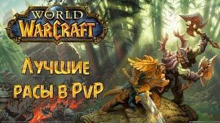 Лучшие расы в PvP World of Warcraft 1800+