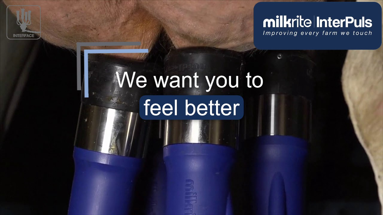 Lot Of 4 Milk-Rite Ultraliner Inflation 01AU *NEW*
