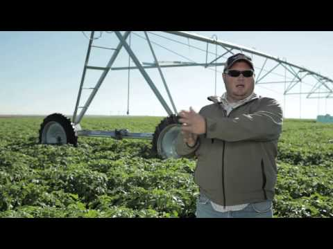 Growing more, using less: conserving water on today's farm