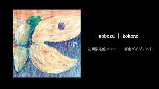 7thAlbum「ココーノ」[2014.12.10 release] 初回限定盤 特典CD・B面集ダ...