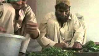 Pakistan Ostrich Company PakOstrich 1/7