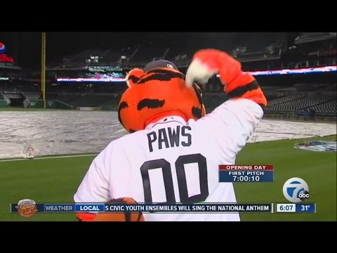 Paws Gets New Jersey For 2016 Detroit Tigers Season