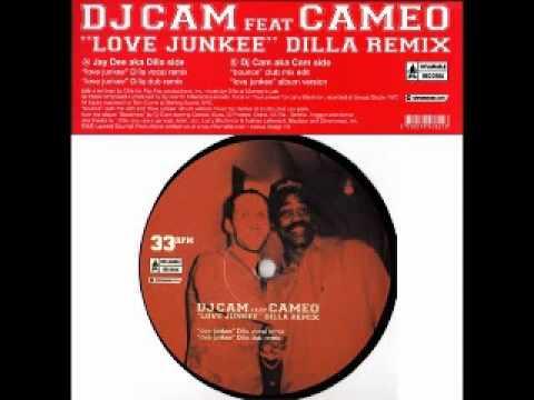 DJ Cam feat' Cameo - Love Junkee
