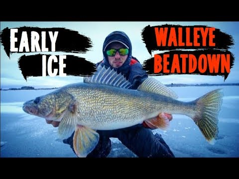 Early Ice Walleye Fishing (POUNDING THEM)