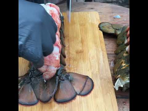 Prepping lobster tails #3