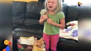 Girl Gets Kitten Surprise For Her Birthday | The Dodo
