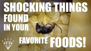10 Shocking Things Found in Your Favorite Foods!