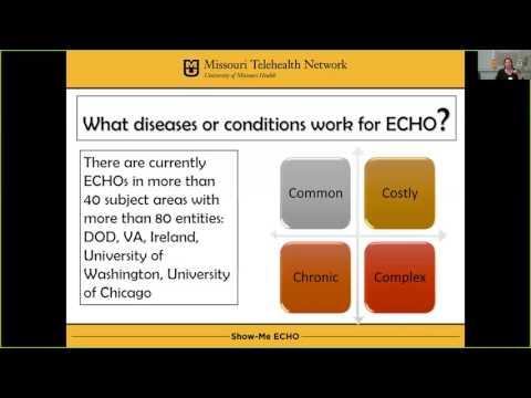 TRC Webinar: Project ECHO