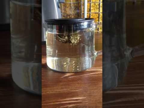 Parfum - элитная парфюмерия с доставкой по России