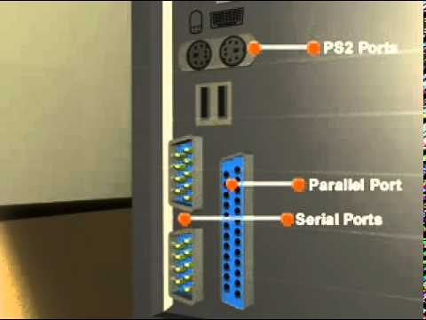 IT Essentials: PC Hardware and Software - Peripheral Connectors