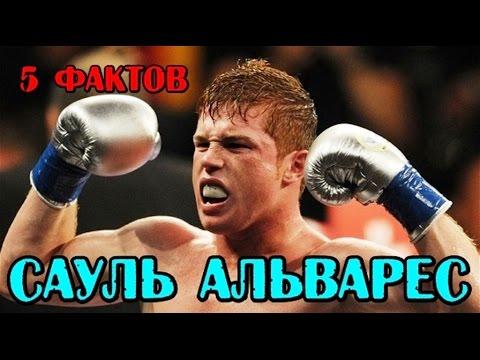 Видео Марафон чемпион
