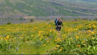 Grant's Getaways:  Towns to Trails in the Gorge