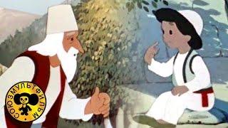 Палка выручалка | Советские мультфильмы для детей