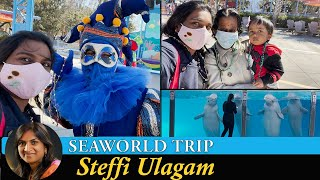 SeaWorld San Antonio Trip in Tamil | Dolphin Show and Sea Lion Show (Tamil)