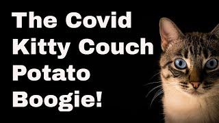 The Covid Kitty Couch Potato Boogie - Cute Dancing Cat Gifs Set to Music - Mary Ann Farley