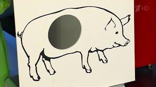 Жить здорово! Свиной грипп.  (02.03.2016)