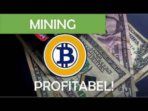 Mining von Bitcoin Gold extrem profitabel!