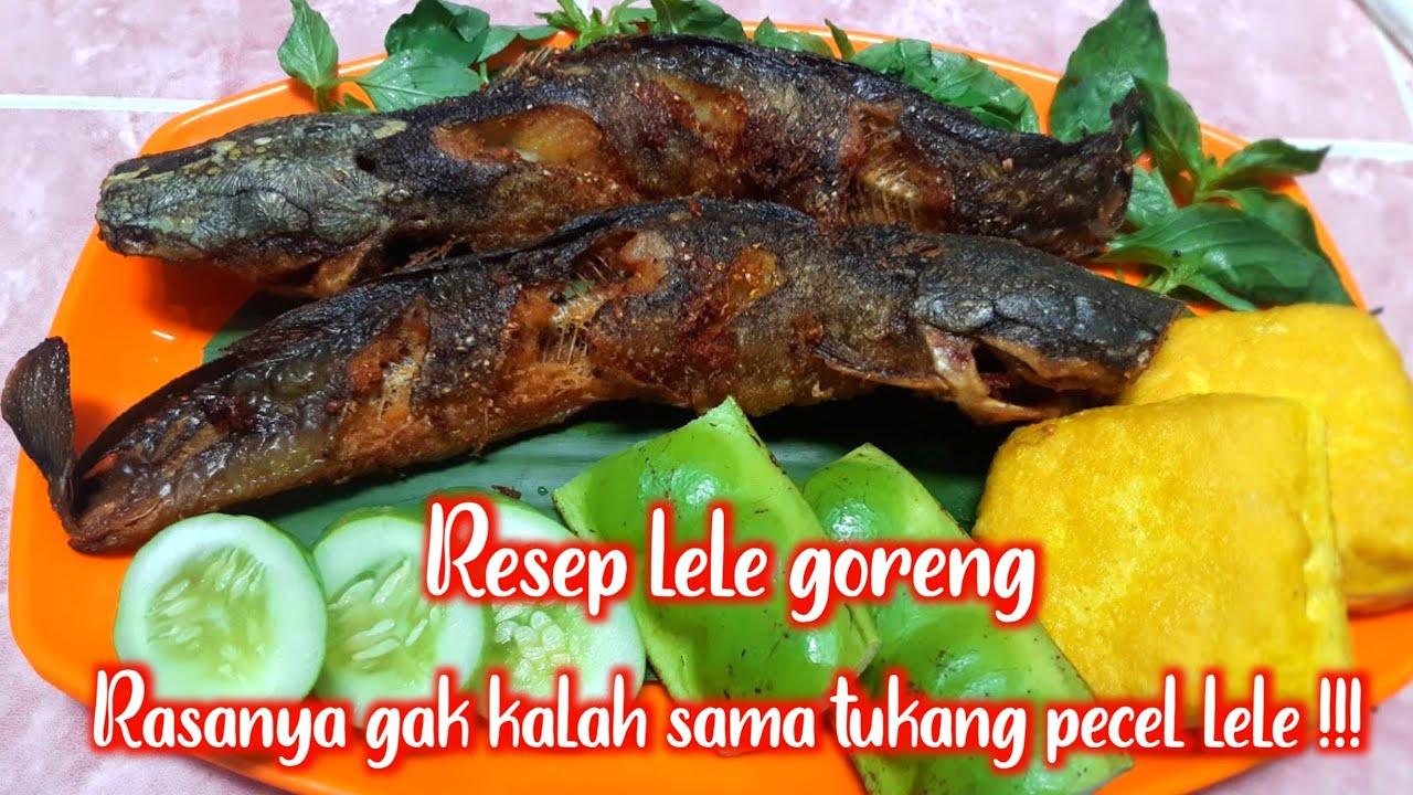 Resep Lele Goreng Beserta Tips Menggoreng Ikan Youtube